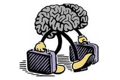 Brain-Drain1